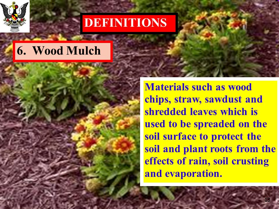 DEFINITIONS 6. Wood Mulch