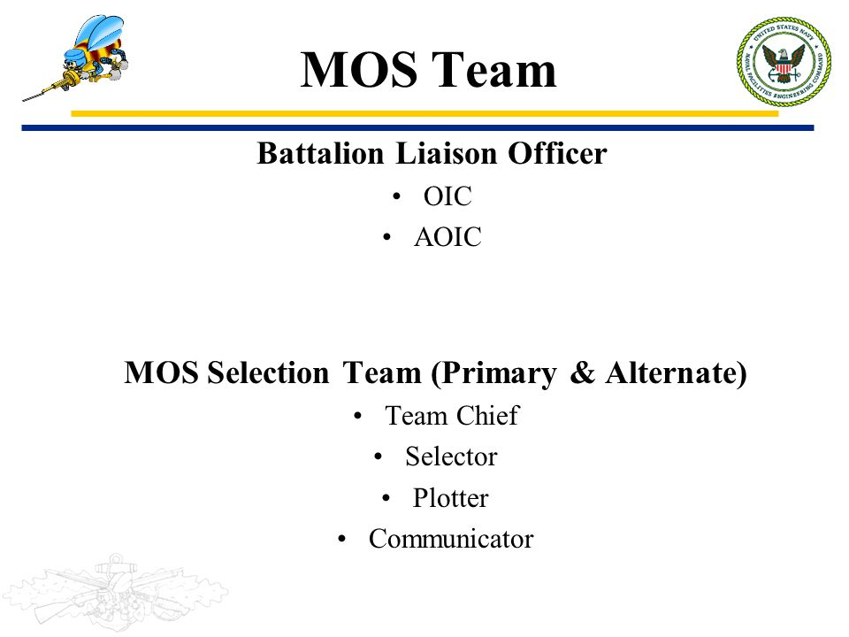 Battalion Liaison Officer MOS Selection Team (Primary & Alternate)