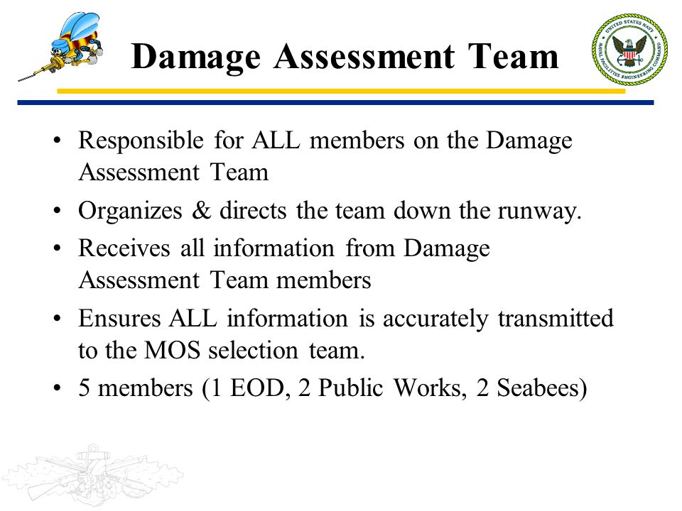 Damage Assessment Team