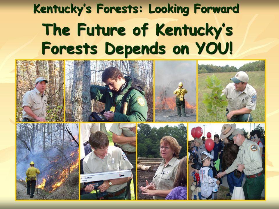 The Future of Kentucky's Forests Depends on YOU!