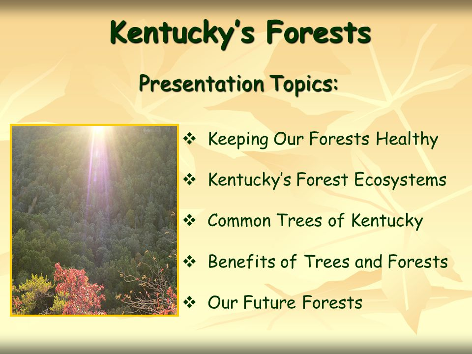 Kentucky's Forests Presentation Topics: Keeping Our Forests Healthy