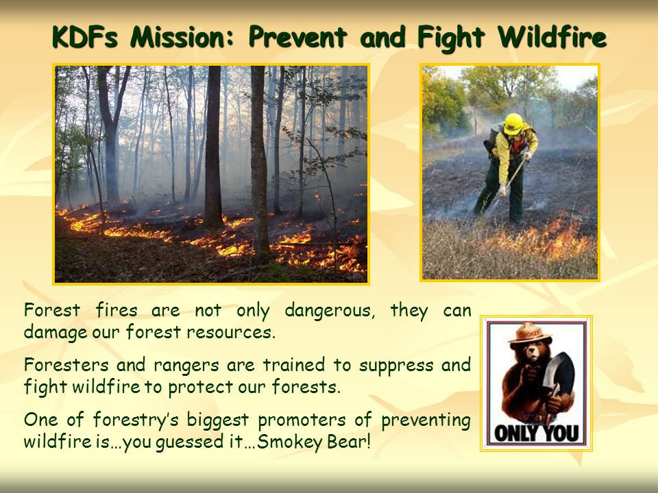 KDFs Mission: Prevent and Fight Wildfire