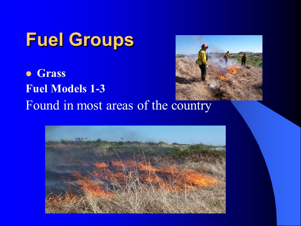 Fuel Groups Grass Fuel Models 1-3 Found in most areas of the country