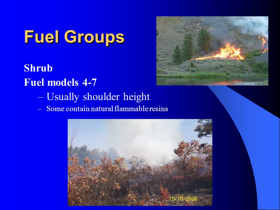 Fuel Groups Shrub Fuel models 4-7 Usually shoulder height