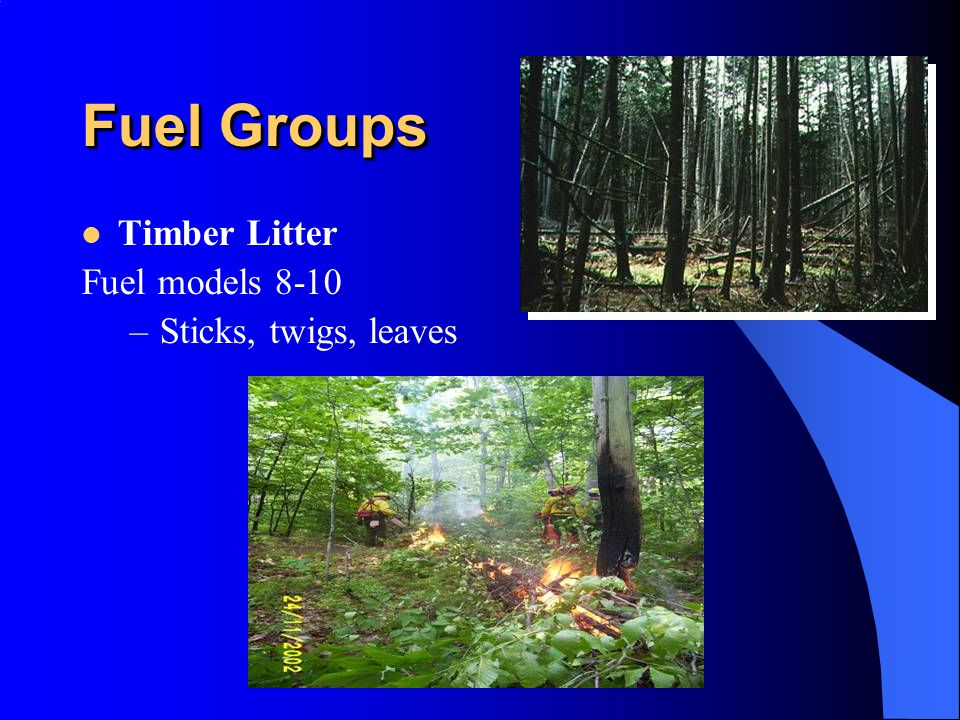 Fuel Groups Timber Litter Fuel models 8-10 Sticks, twigs, leaves