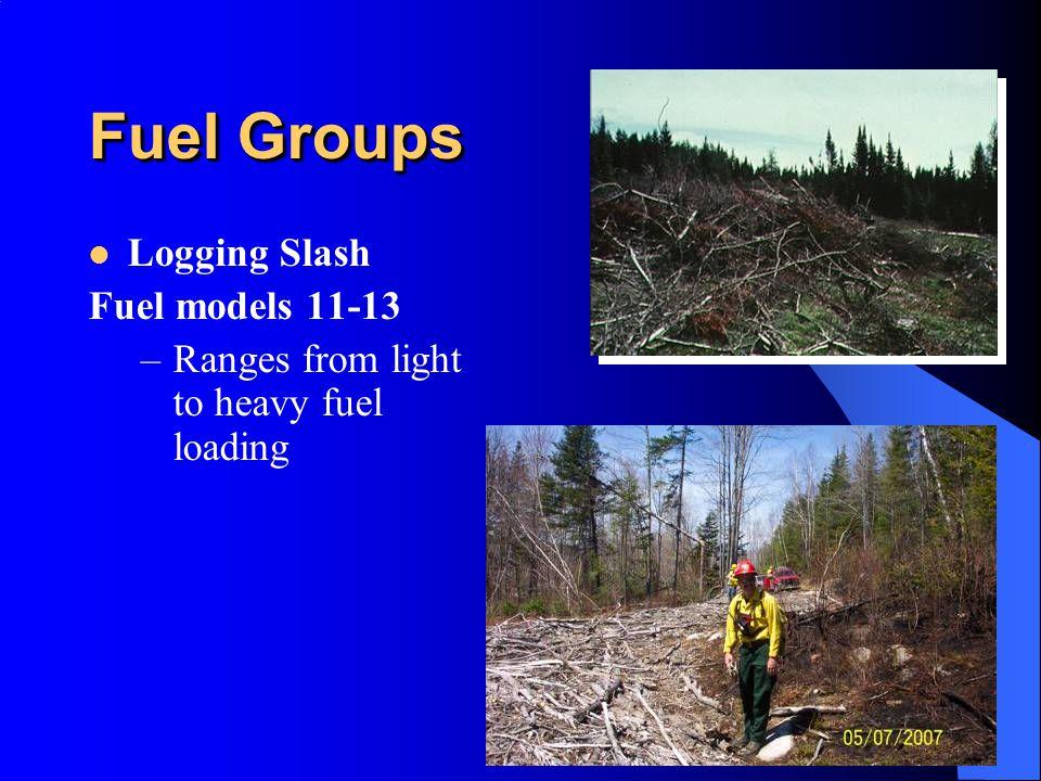 Fuel Groups Logging Slash Fuel models 11-13