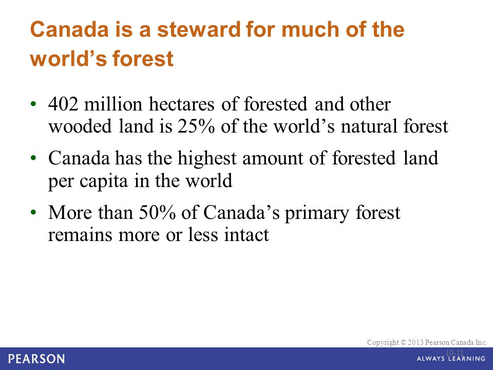 Canada is a steward for much of the world's forest