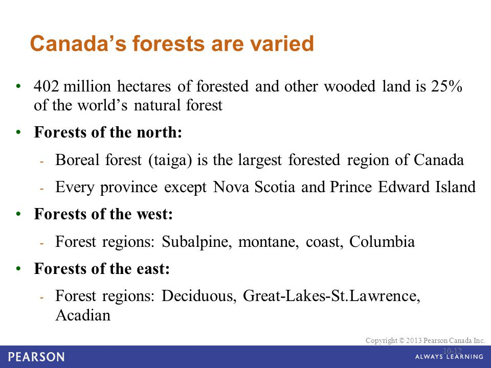 Canada's forests are varied
