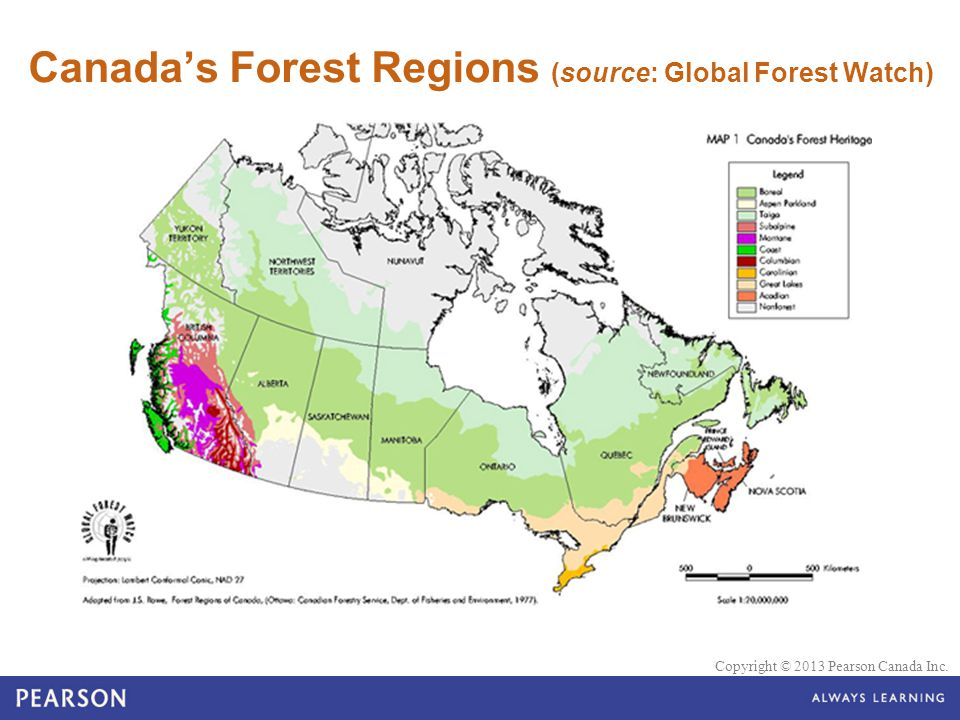 Canada's Forest Regions (source: Global Forest Watch)