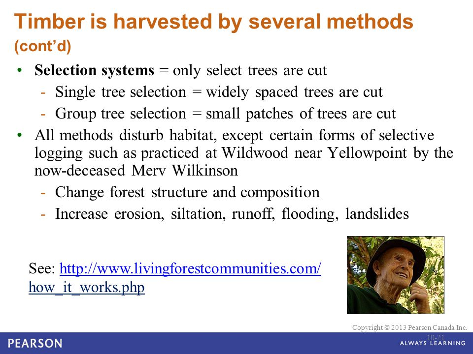 Timber is harvested by several methods (cont'd)
