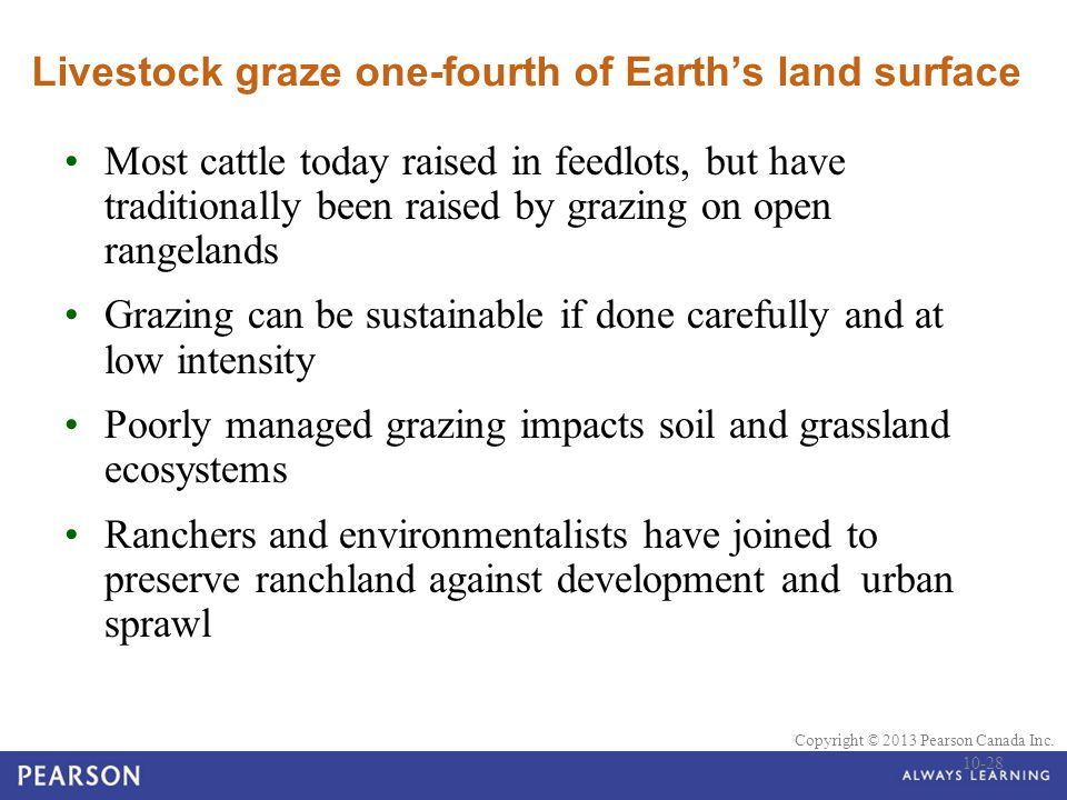 Livestock graze one-fourth of Earth's land surface