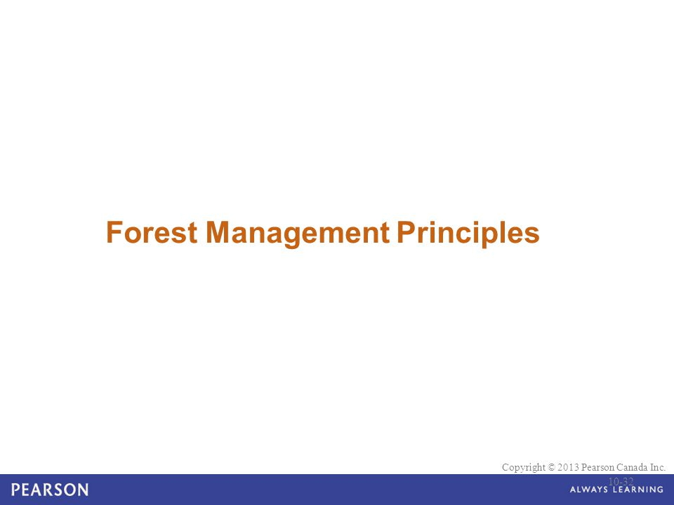 Forest Management Principles