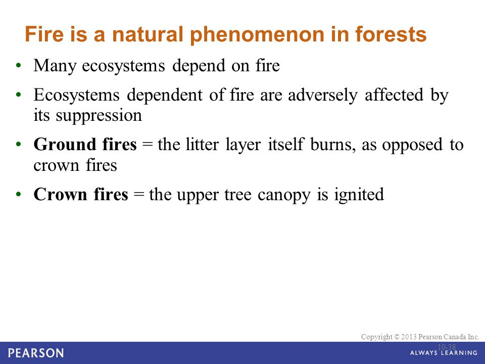Fire is a natural phenomenon in forests