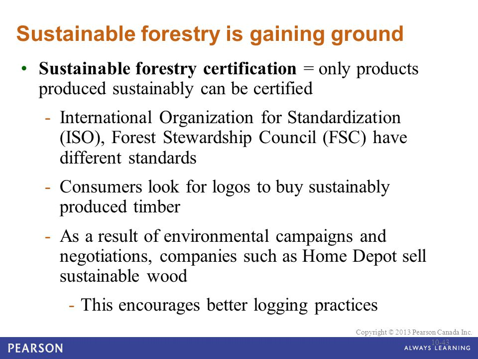 Sustainable forestry is gaining ground
