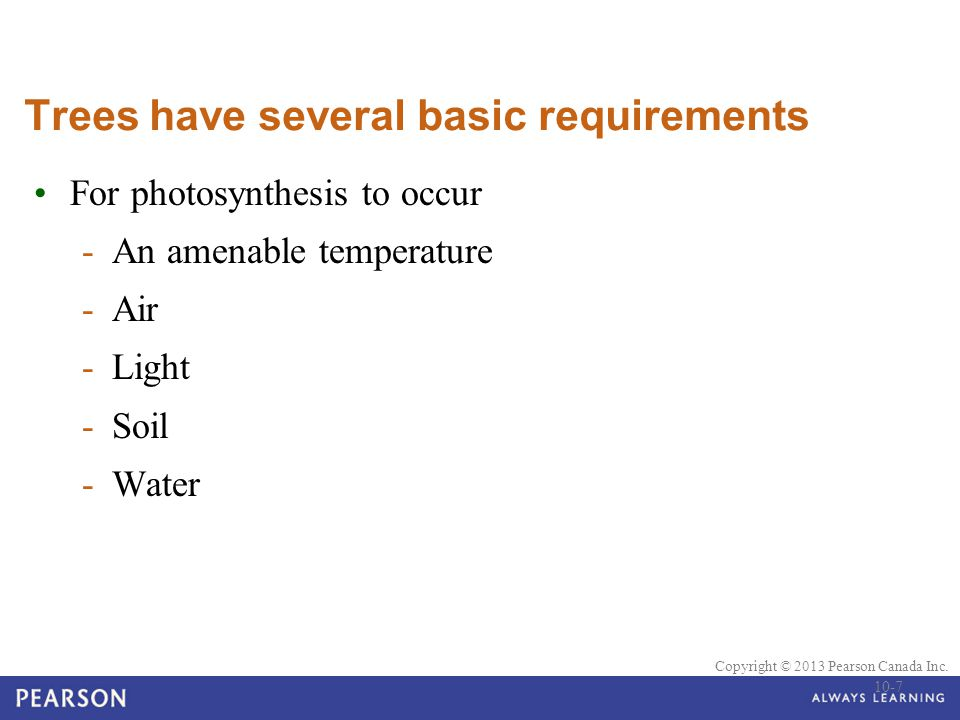 Trees have several basic requirements