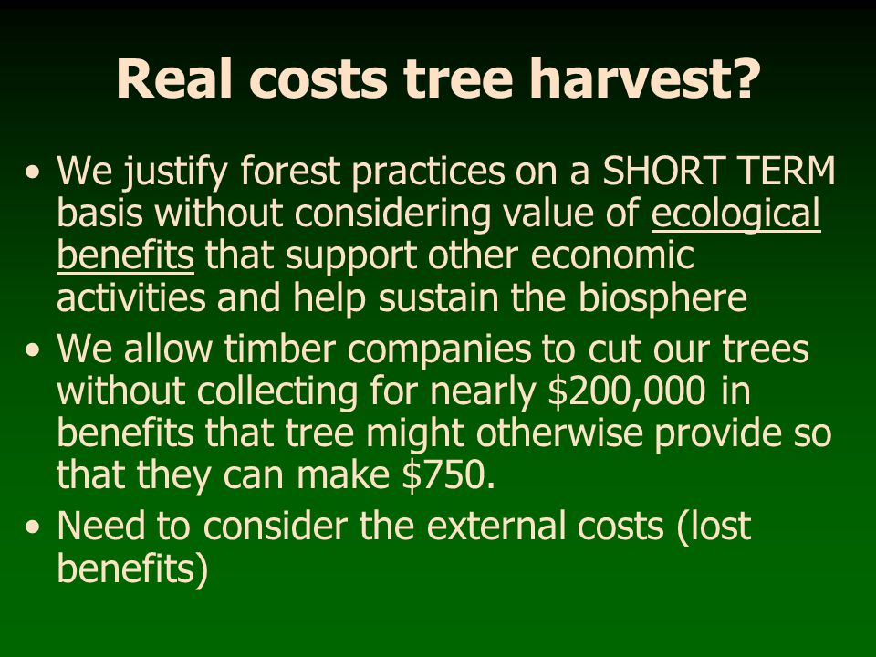 Real costs tree harvest