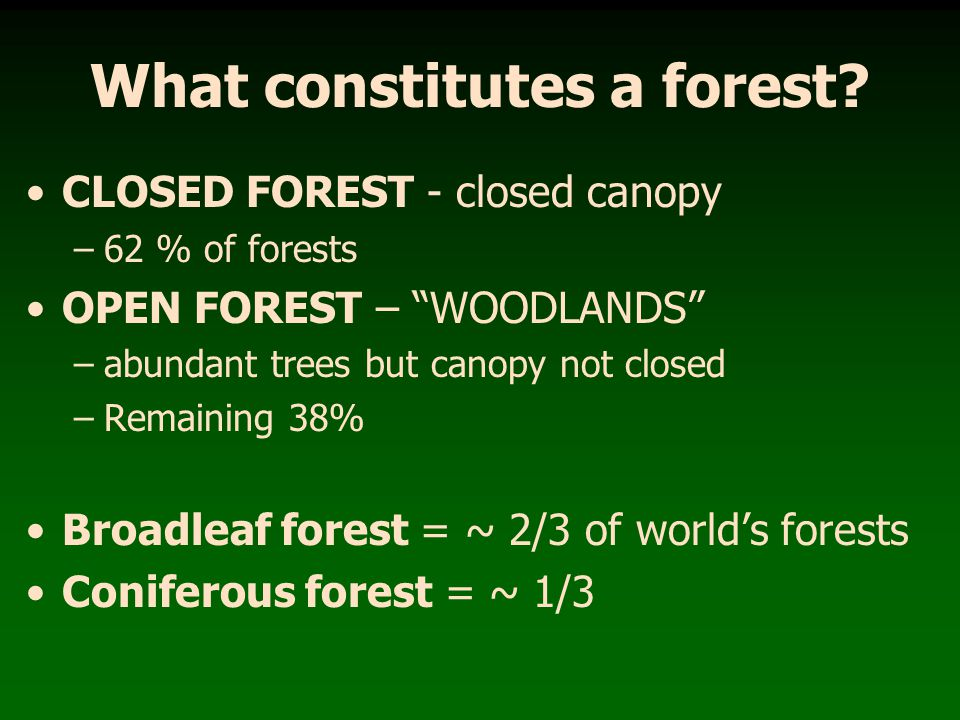 What constitutes a forest