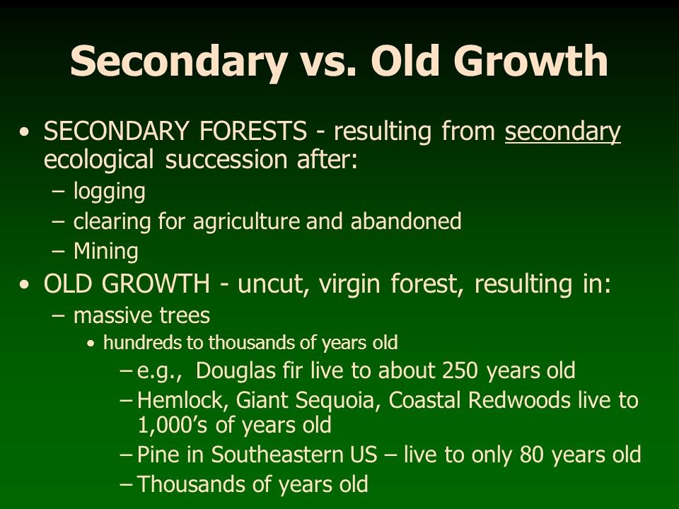 Secondary vs. Old Growth