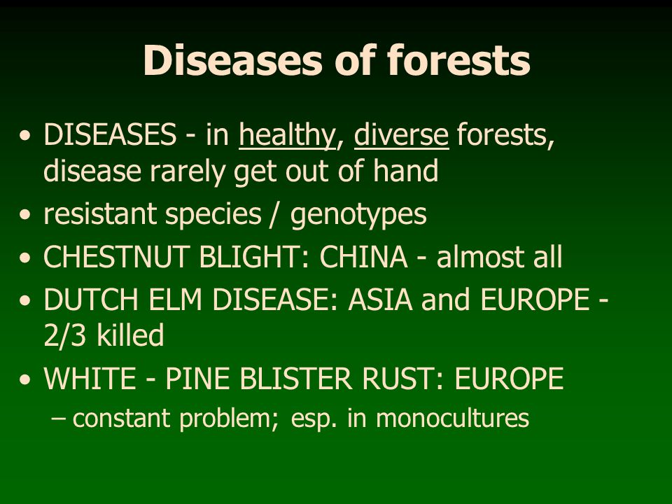 Diseases of forests DISEASES - in healthy, diverse forests, disease rarely get out of hand. resistant species / genotypes.