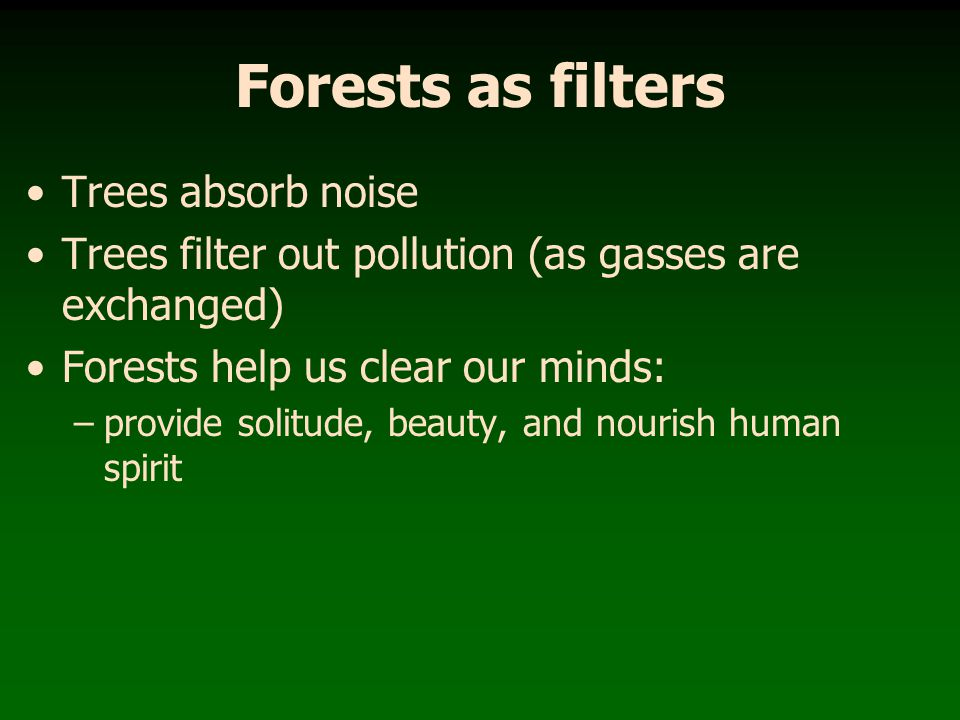 Forests as filters Trees absorb noise