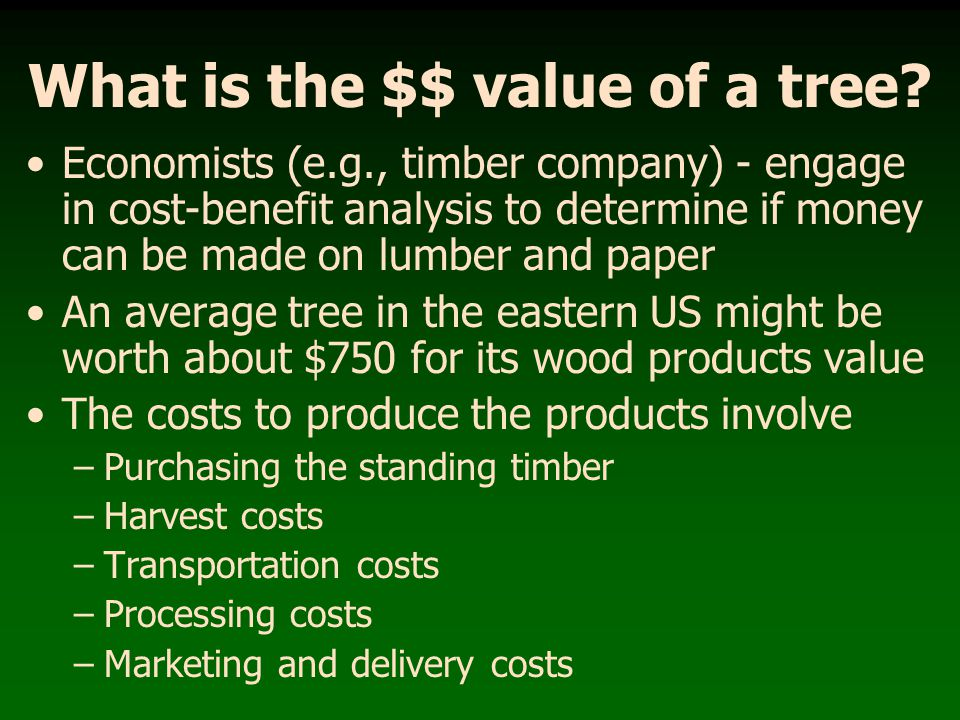 What is the $$ value of a tree