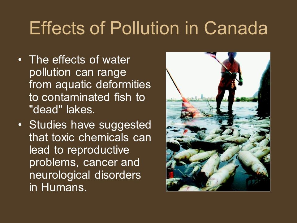 Effects of Pollution in Canada