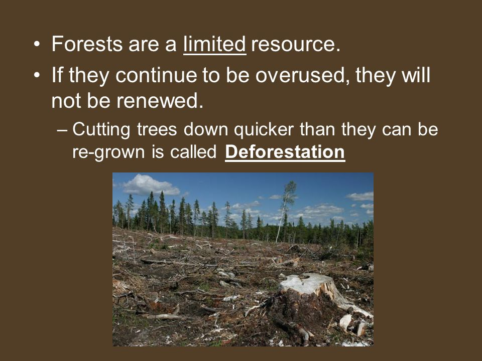 Forests are a limited resource.