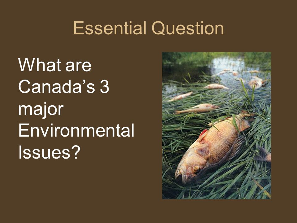 Essential Question What are Canada's 3 major Environmental Issues