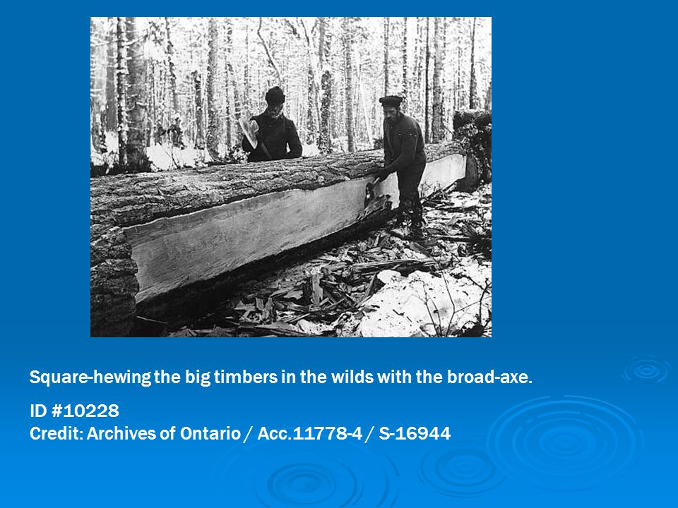 Square-hewing the big timbers in the wilds with the broad-axe.