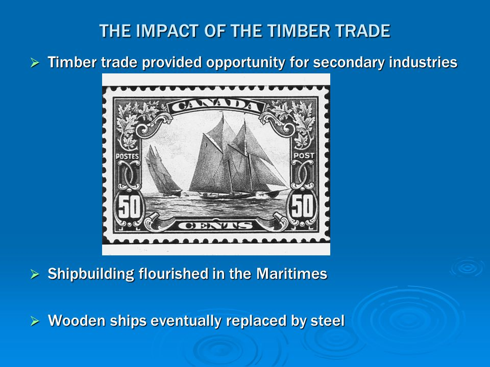 THE IMPACT OF THE TIMBER TRADE