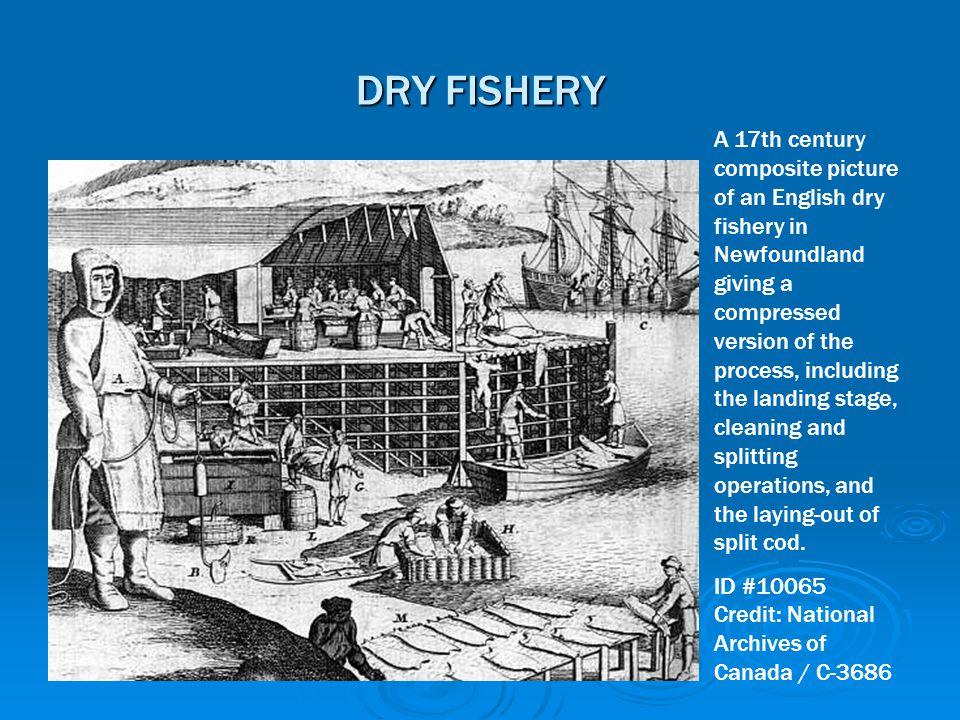 DRY FISHERY