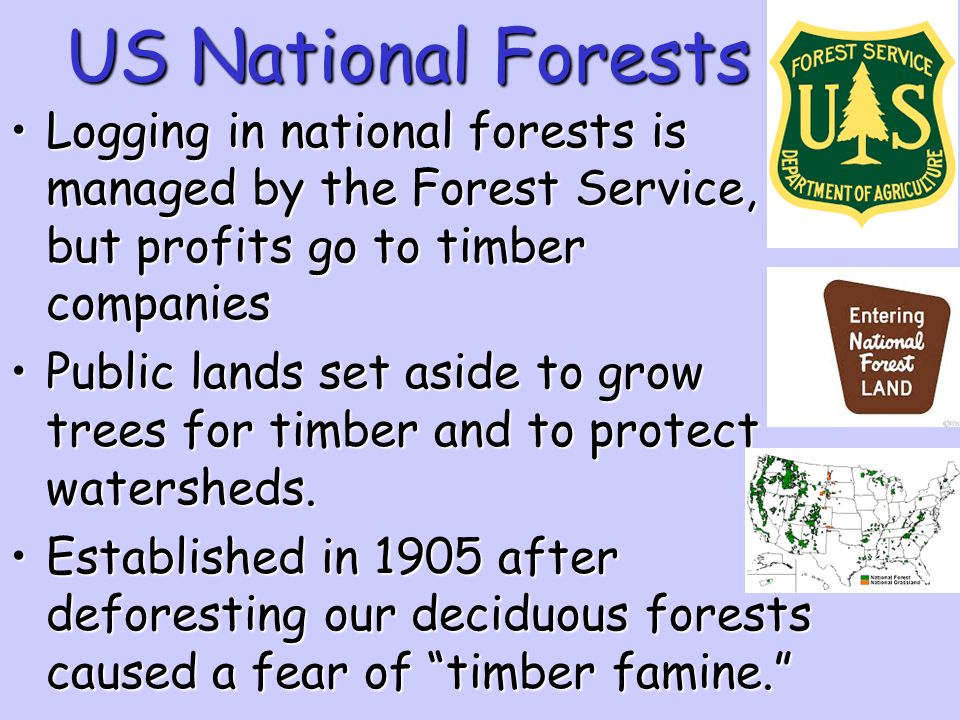 US National Forests Logging in national forests is managed by the Forest Service, but profits go to timber companies.
