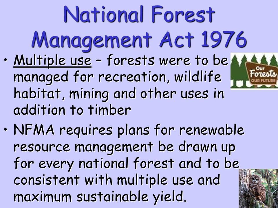National Forest Management Act 1976