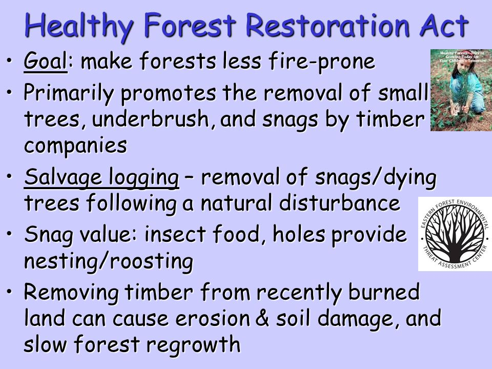 Healthy Forest Restoration Act