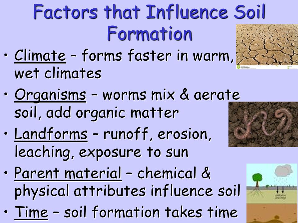 Environmental science unit 9 resource management ppt for Soil forming factors