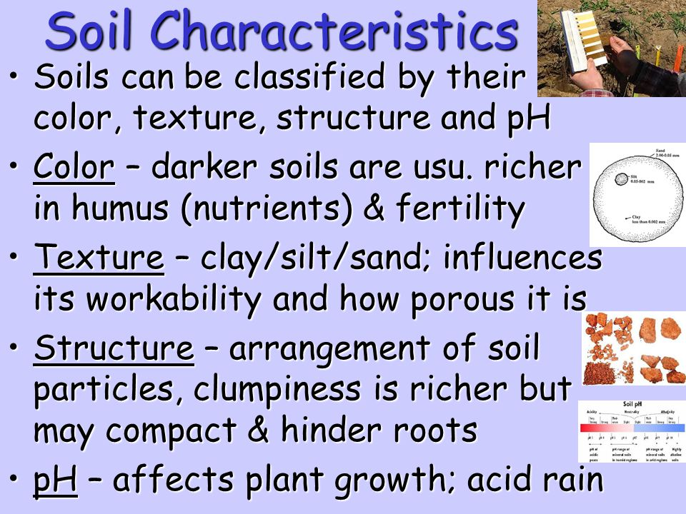 Soil Characteristics Soils can be classified by their color, texture, structure and pH.