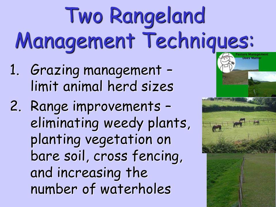 Two Rangeland Management Techniques: