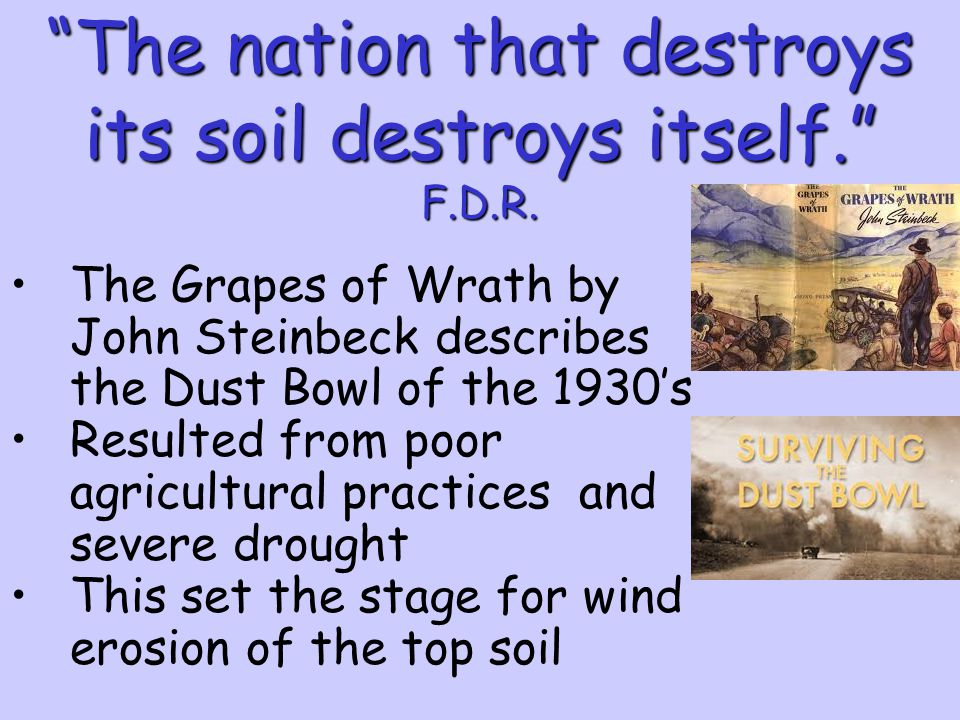 the criticism of farm subsidy in john steinbecks the grapes of warth The criticism of farm subsidy in john steinbeck's the grapes of warth pages 5  more essays like this: john steinbeck, the grapes of wrath, farm subsidy.