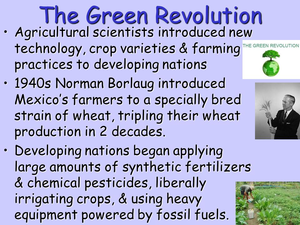 The Green Revolution Agricultural scientists introduced new technology, crop varieties & farming practices to developing nations.