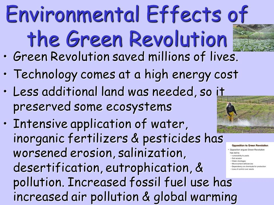 Environmental Effects of the Green Revolution