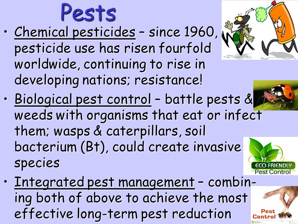 Pests Chemical pesticides – since 1960, pesticide use has risen fourfold worldwide, continuing to rise in developing nations; resistance!