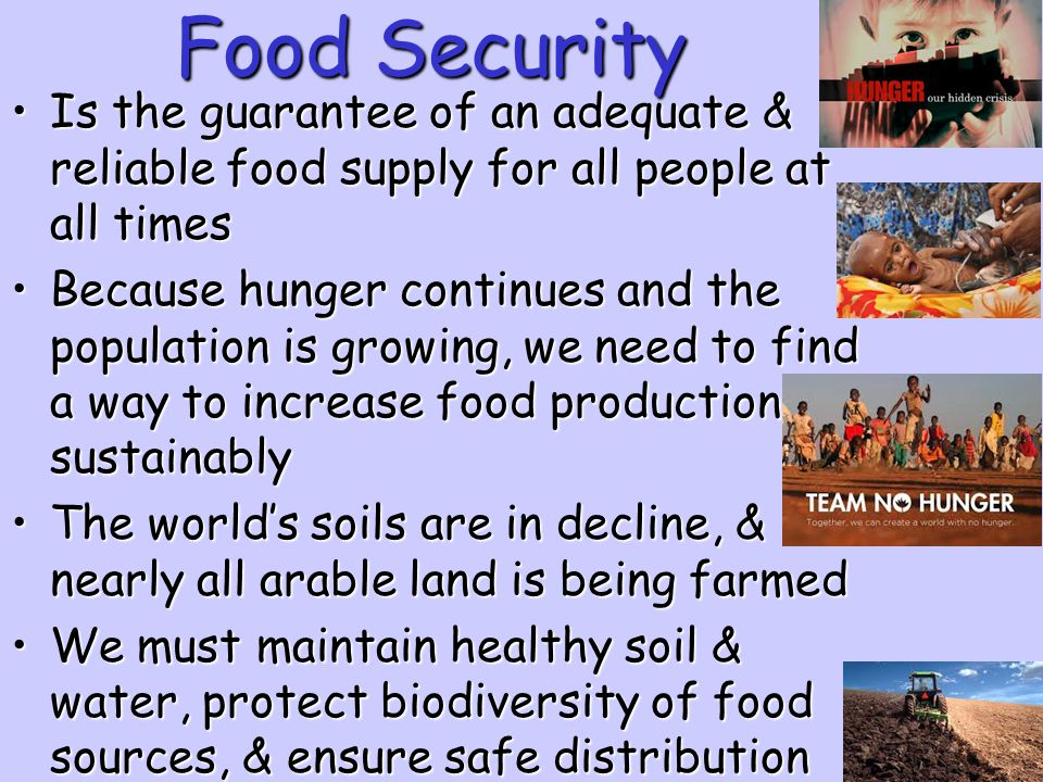 Food Security Is the guarantee of an adequate & reliable food supply for all people at all times.