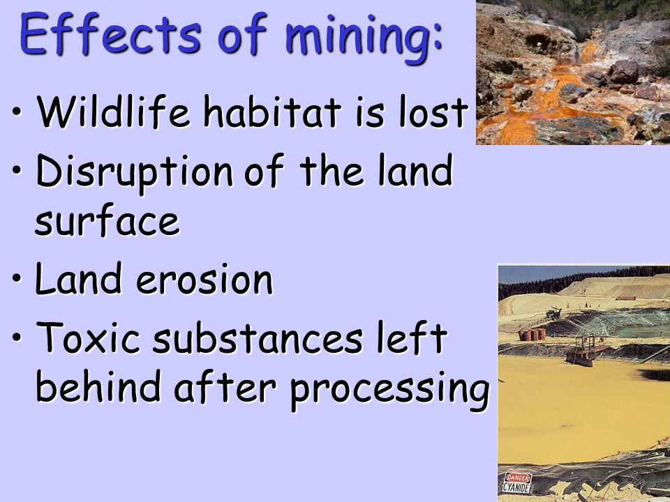 Effects of mining: Wildlife habitat is lost