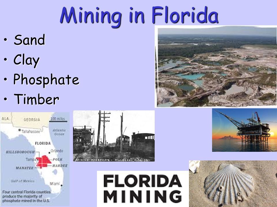 Mining in Florida Sand Clay Phosphate Timber