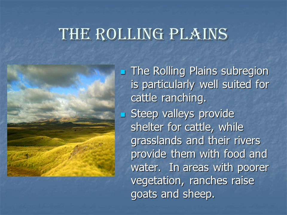 The Rolling Plains The Rolling Plains subregion is particularly well suited for cattle ranching.