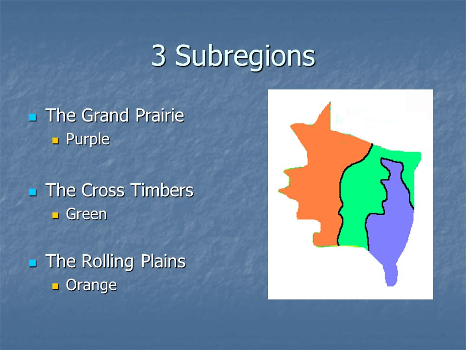 3 Subregions The Grand Prairie The Cross Timbers The Rolling Plains