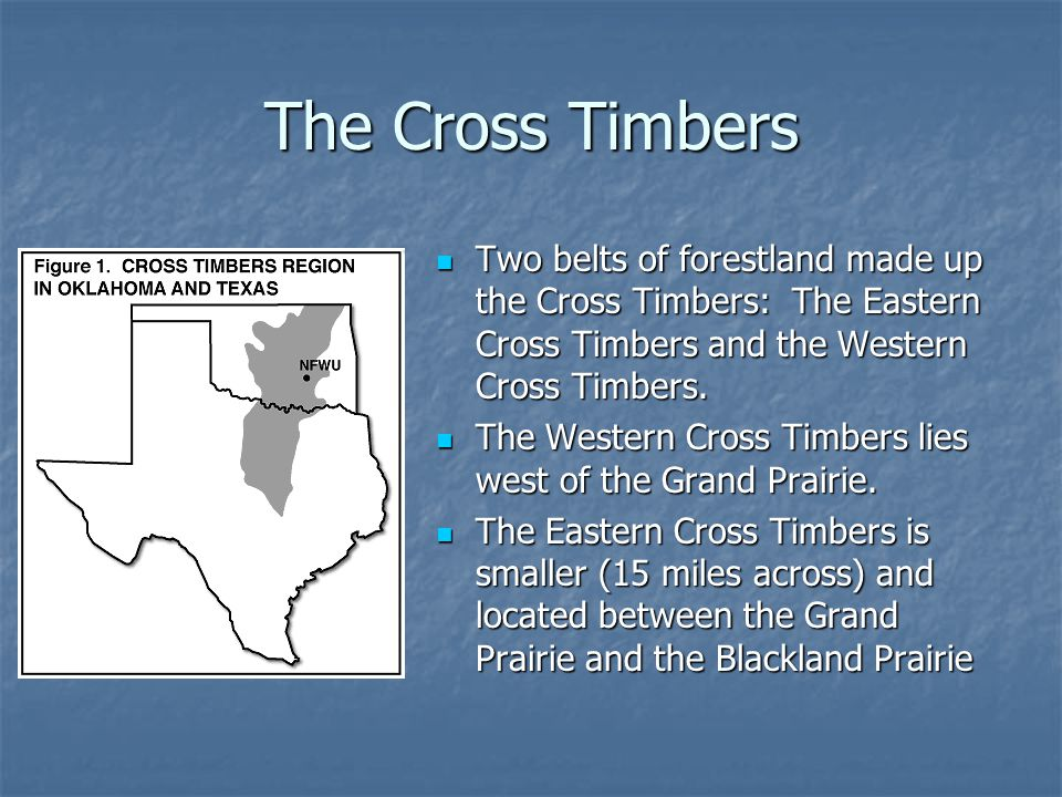 The Cross Timbers Two belts of forestland made up the Cross Timbers: The Eastern Cross Timbers and the Western Cross Timbers.