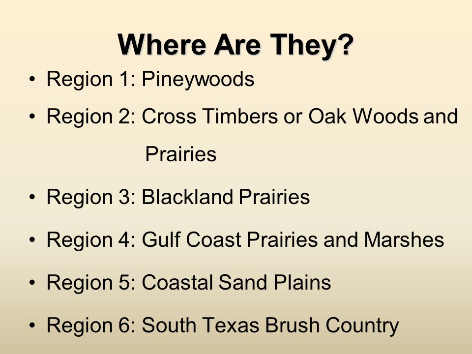 Where Are They Region 1: Pineywoods