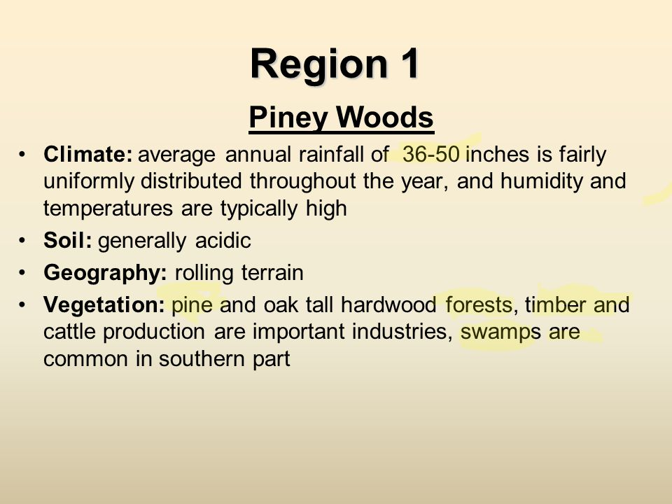 Region 1 Piney Woods.