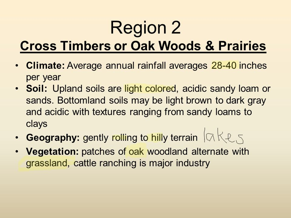 Cross Timbers or Oak Woods & Prairies